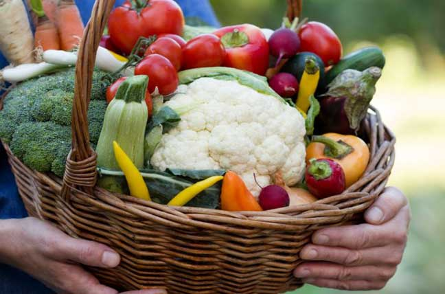 What is fodmap